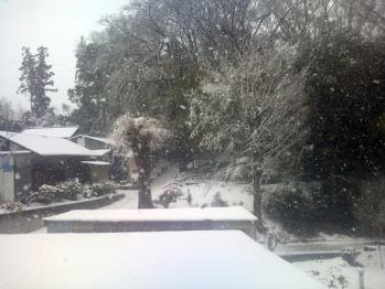 ANC事務所から望む雪景色