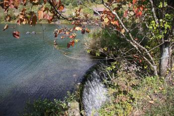 秋の静かな栂池高原