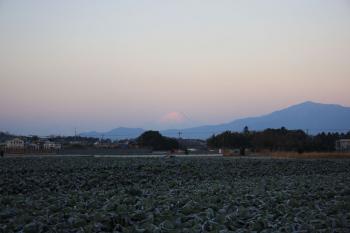 2014年元旦の富士山