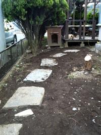 庭の枯れた木を掘り出して敷石しました