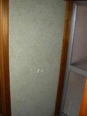 脱衣所の壁(工事前)