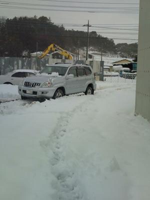 プラドで雪かき