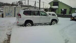 プラド 雪にはまりました!